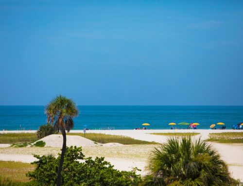 Where to Stay in Florida for your next Sunshine State Vacation